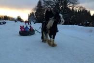 Week-end équestre hivernal en Alsace