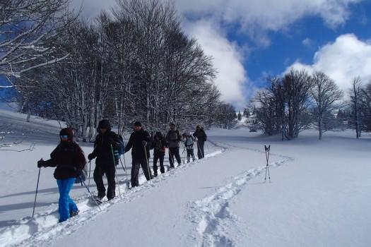 Week-end Raquettes dans le Jura